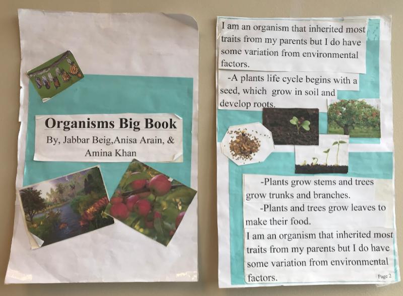 Big-Book-Organisms.png#asset:7511