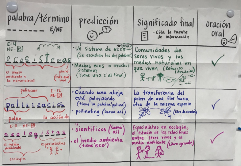 GLAD Strategies in Spanish: Diccionario Cognitivo