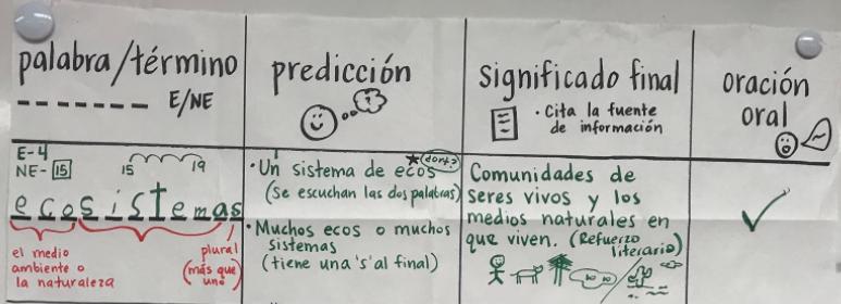 Diccionario-cognitivo-example-day-1-2.pn